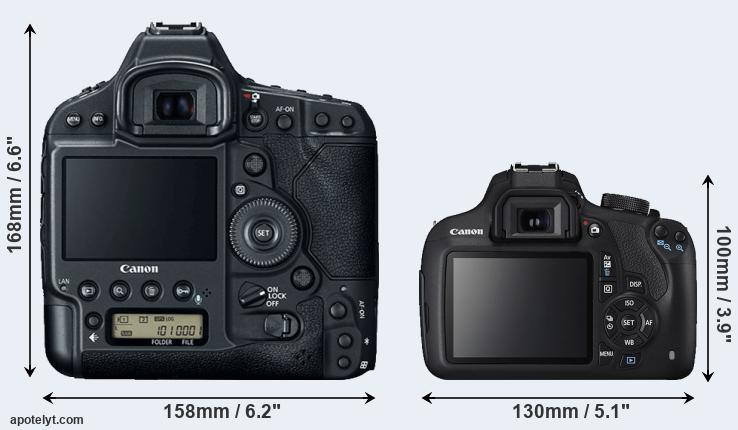 1DX Mark II and T5 rear side