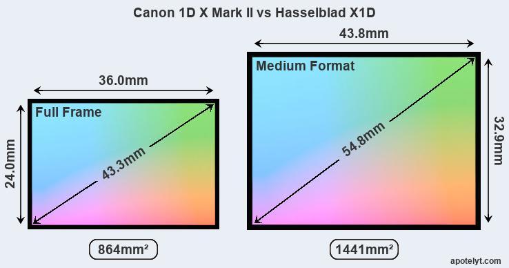 Canon 1D X Mark II vs Hasselblad X1D Comparison Review