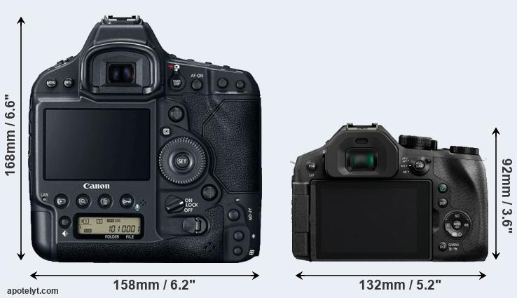 1DX Mark II and FZ300 rear side