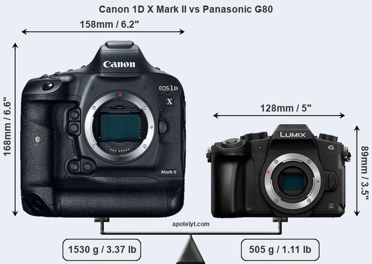 Compare Canon 1D X Mark II and Panasonic G80