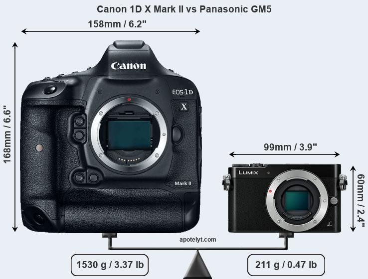 Size Canon 1D X Mark II vs Panasonic GM5