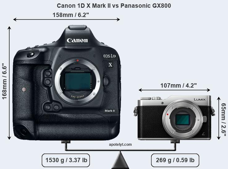 Size Canon 1D X Mark II vs Panasonic GX800