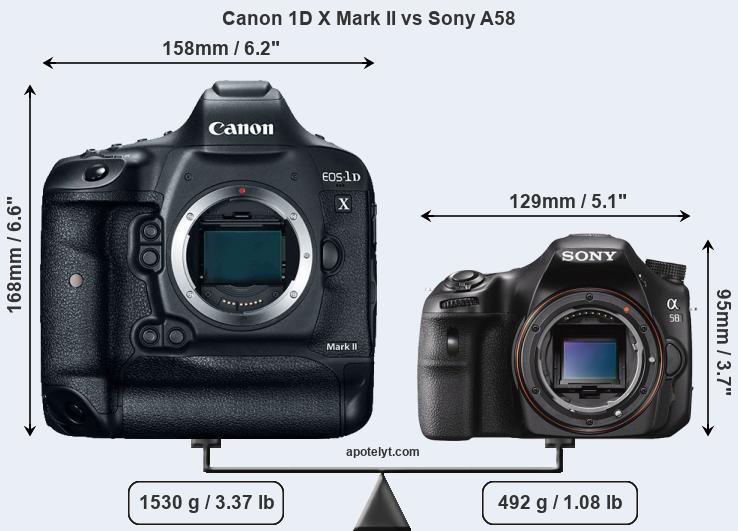 Size Canon 1D X Mark II vs Sony A58