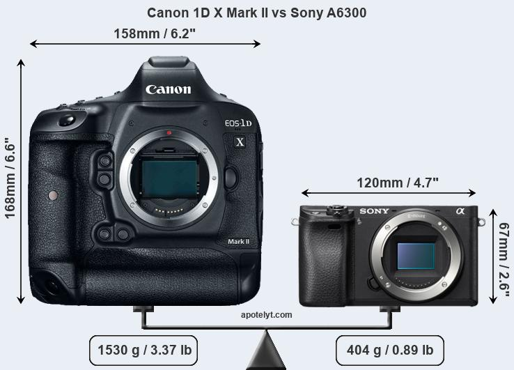 Size Canon 1D X Mark II vs Sony A6300
