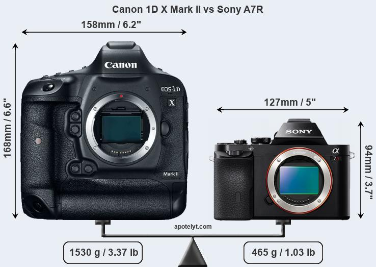 Size Canon 1D X Mark II vs Sony A7R