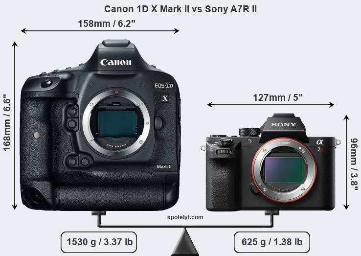 Size Canon 1D X Mark II vs Sony A7R II