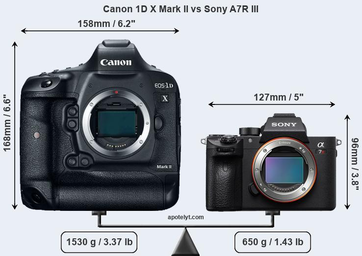 Compare Canon 1D X Mark II and Sony A7R III