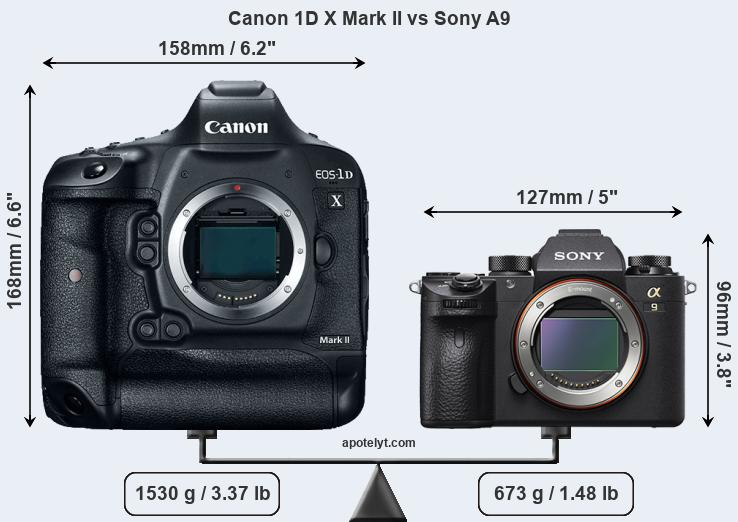 Size Canon 1D X Mark II vs Sony A9