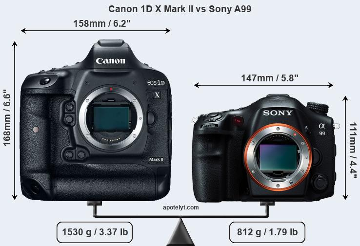 Size Canon 1D X Mark II vs Sony A99