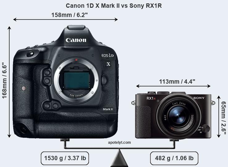 Size Canon 1D X Mark II vs Sony RX1R