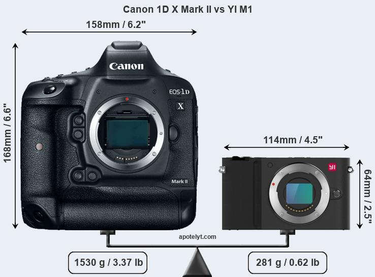 Compare Canon 1D X Mark II and YI M1