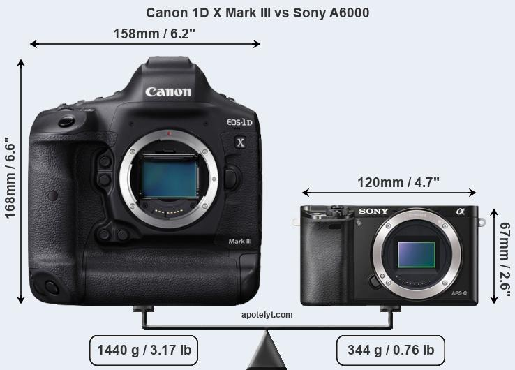 Size Canon 1D X Mark III vs Sony A6000