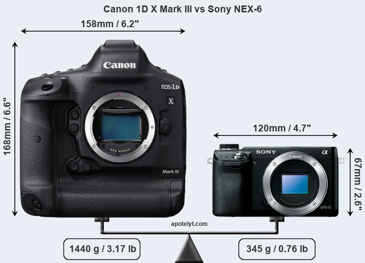 Size Canon 1D X Mark III vs Sony NEX-6