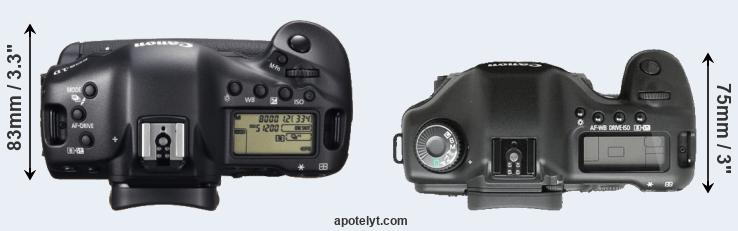 1DX versus 5D top view
