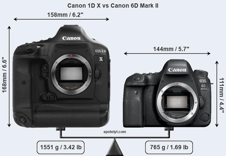 Canon 1D X and Canon 6D Mark II sensor measures
