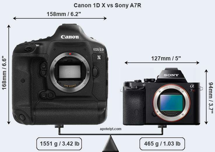 Size Canon 1D X vs Sony A7R