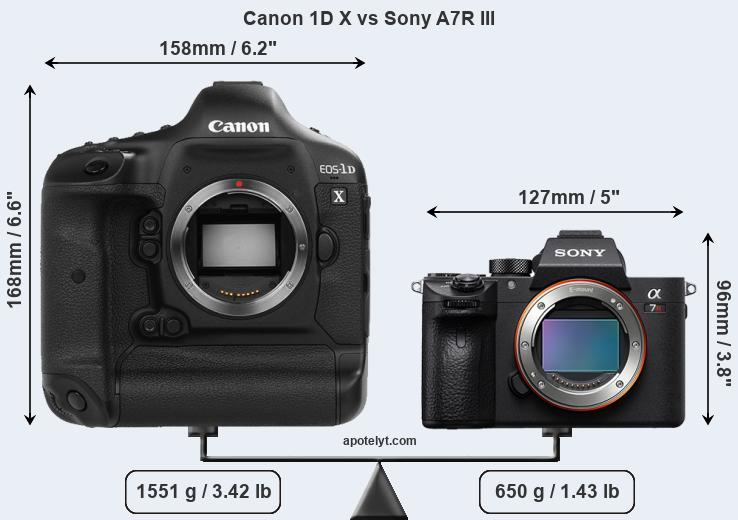 Size Canon 1D X vs Sony A7R III