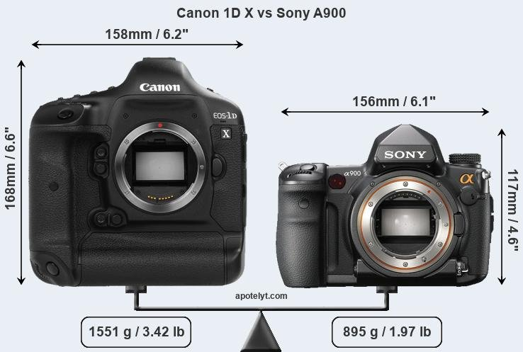 Size Canon 1D X vs Sony A900