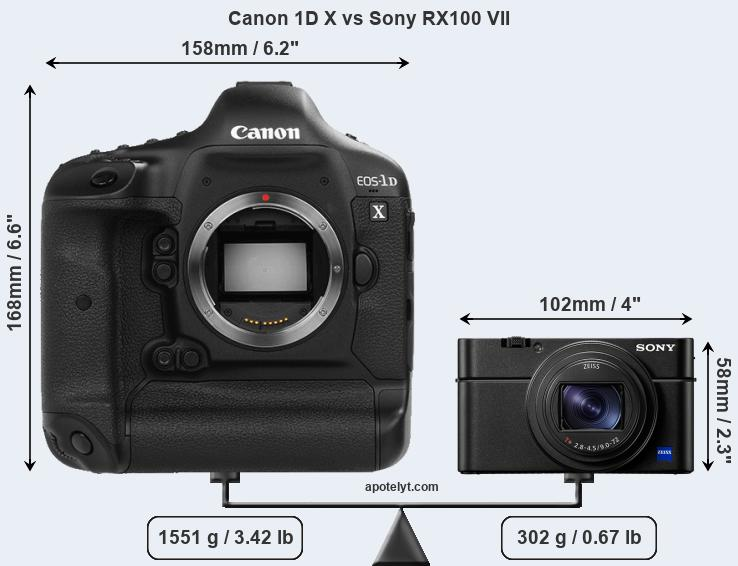 Size Canon 1D X vs Sony RX100 VII
