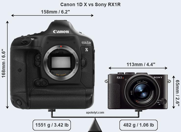 Size Canon 1D X vs Sony RX1R