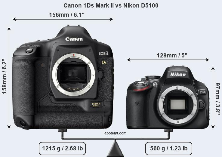 Size Canon 1Ds Mark II vs Nikon D5100