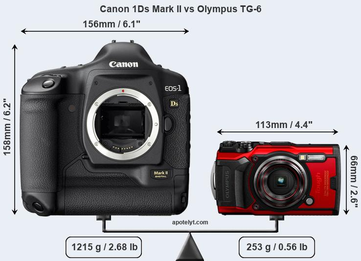 Size Canon 1Ds Mark II vs Olympus TG-6