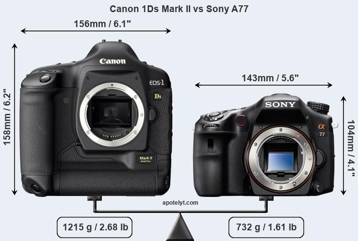 Size Canon 1Ds Mark II vs Sony A77