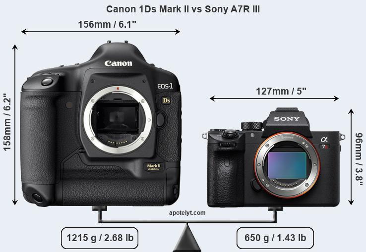 Size Canon 1Ds Mark II vs Sony A7R III