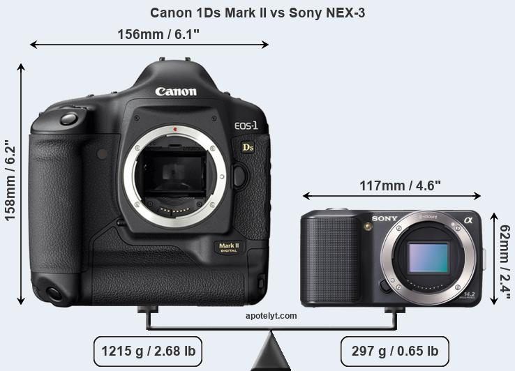 Size Canon 1Ds Mark II vs Sony NEX-3