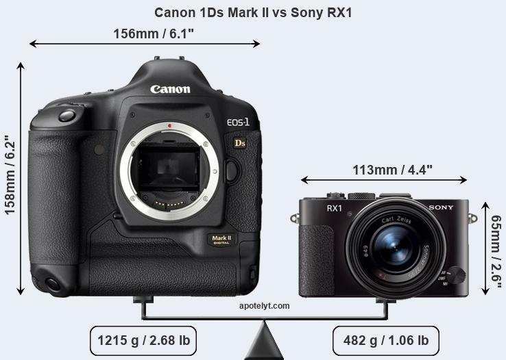 Size Canon 1Ds Mark II vs Sony RX1