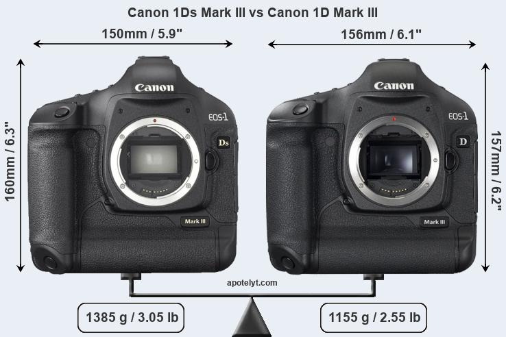 Snapsort Canon 1Ds Mark III vs Canon 1D Mark III