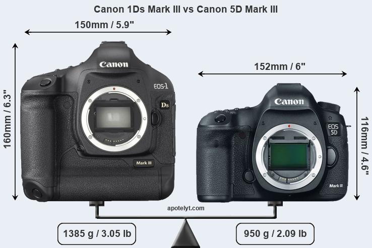 Size Canon 1Ds Mark III vs Canon 5D Mark III