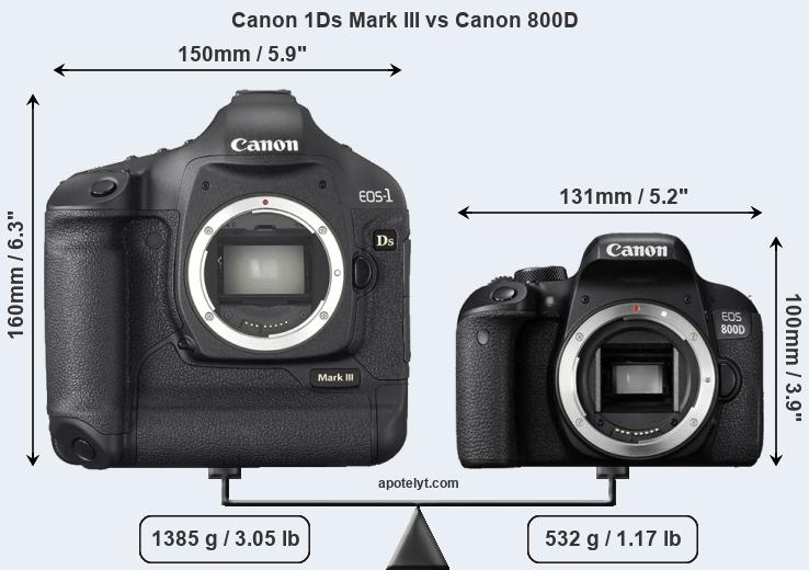 Size Canon 1Ds Mark III vs Canon 800D