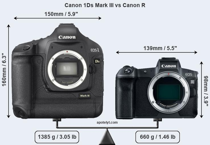 Size Canon 1Ds Mark III vs Canon R