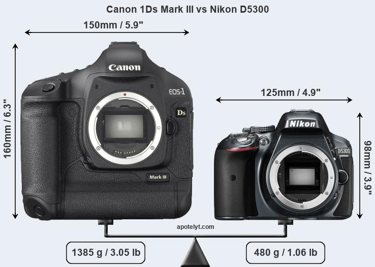 Size Canon 1Ds Mark III vs Nikon D5300