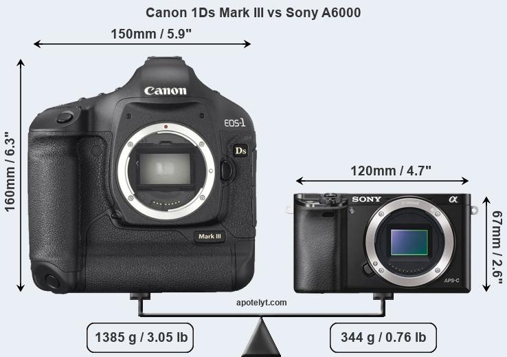 Size Canon 1Ds Mark III vs Sony A6000