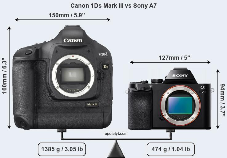 Size Canon 1Ds Mark III vs Sony A7