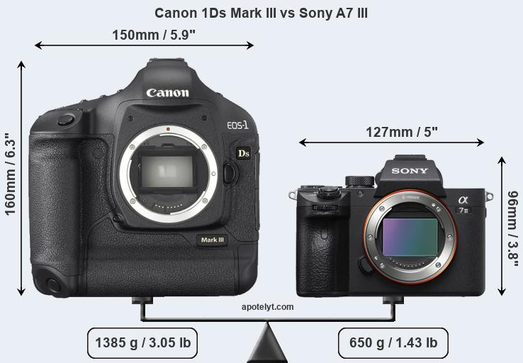 Size Canon 1Ds Mark III vs Sony A7 III