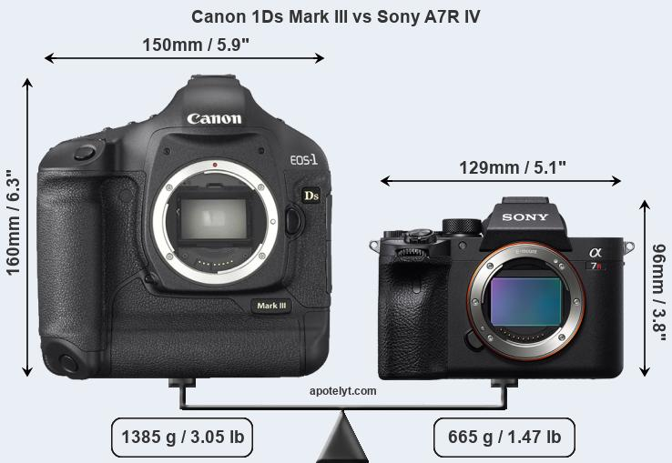 Size Canon 1Ds Mark III vs Sony A7R IV