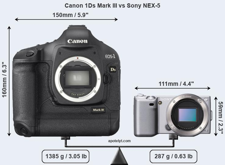 Size Canon 1Ds Mark III vs Sony NEX-5