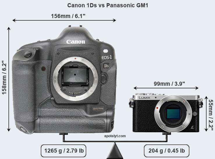 Size Canon 1Ds vs Panasonic GM1