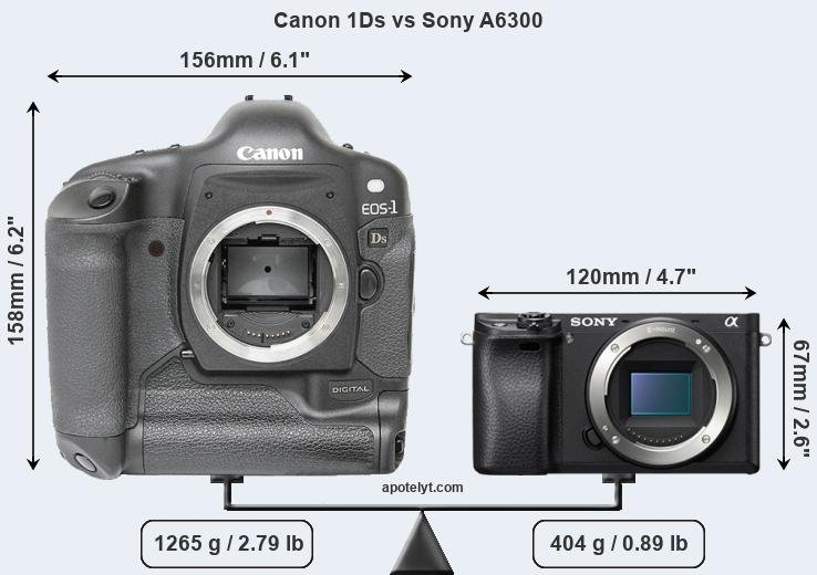 Size Canon 1Ds vs Sony A6300