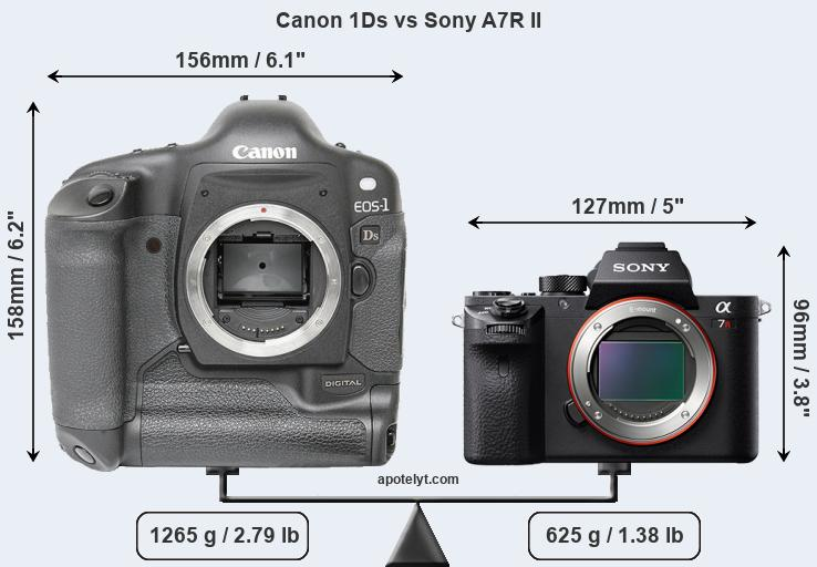 Size Canon 1Ds vs Sony A7R II
