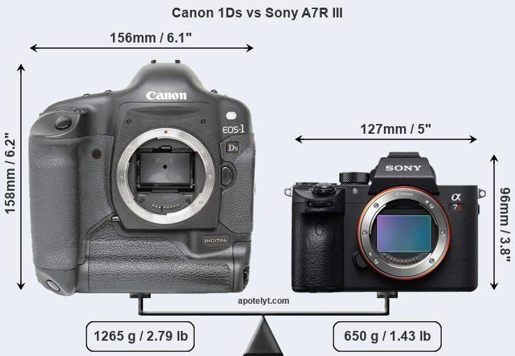 Size Canon 1Ds vs Sony A7R III