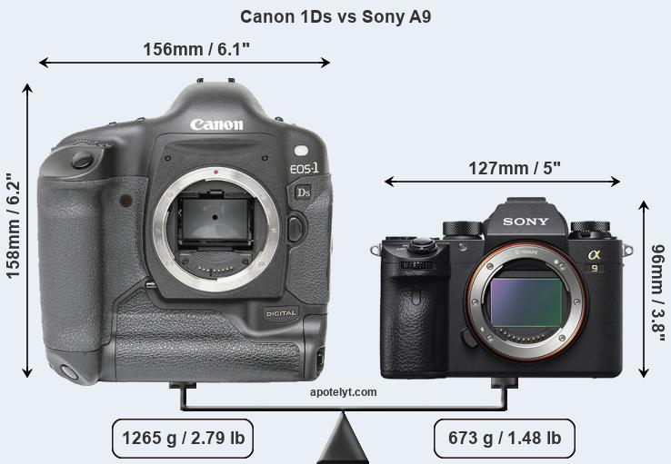 Size Canon 1Ds vs Sony A9