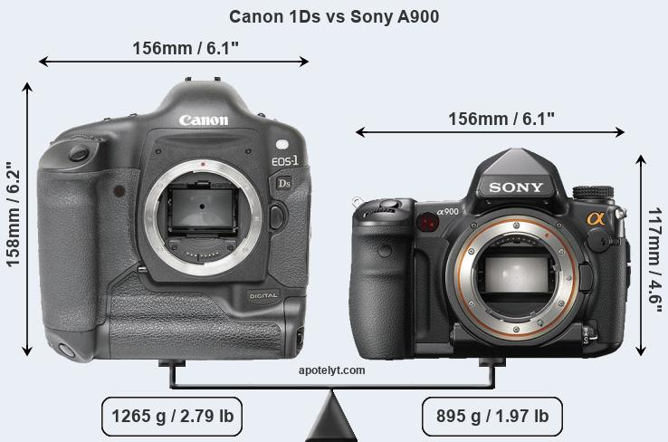 Size Canon 1Ds vs Sony A900
