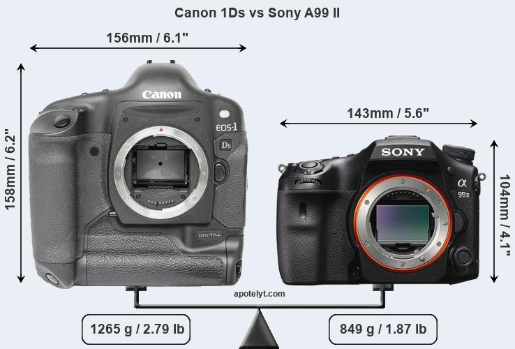Size Canon 1Ds vs Sony A99 II
