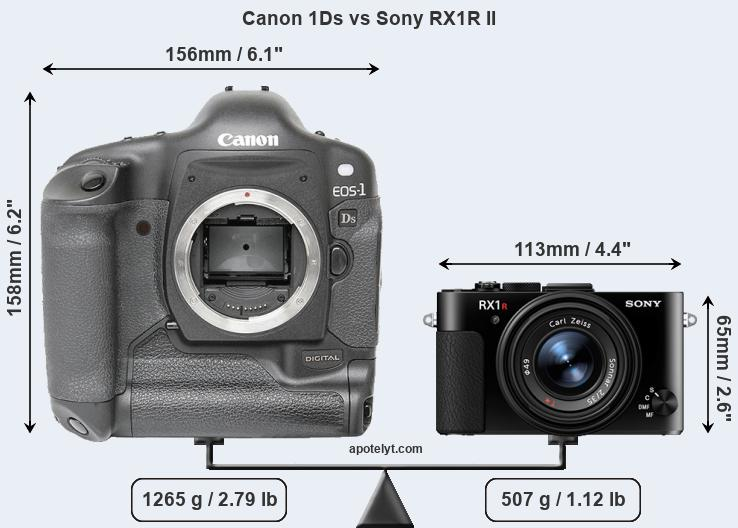 Size Canon 1Ds vs Sony RX1R II