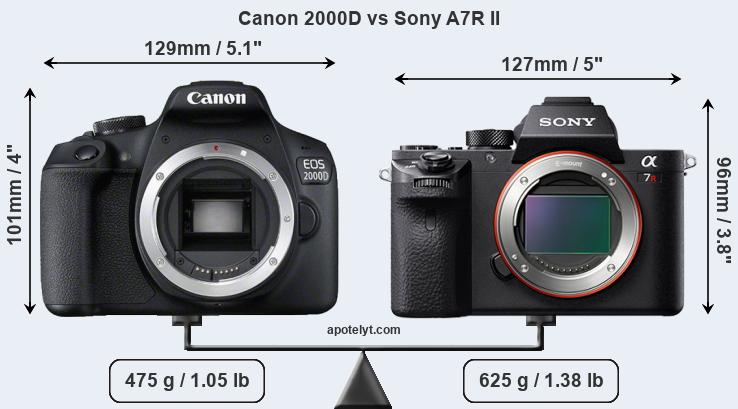 Size Canon 2000D vs Sony A7R II