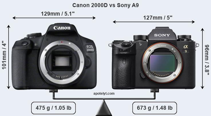 Size Canon 2000D vs Sony A9